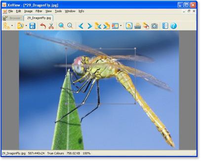 XnView, visualizador de imágenes
